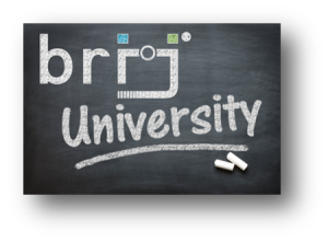 brij University logo-shadow